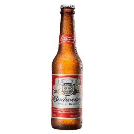 Pack 24 Budweiser